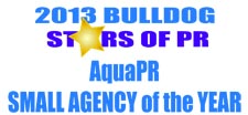 Agency of the year -color